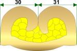 Crimpflanken - Symmetrie im Drahtcrimpbereich