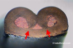 Schliffbild - Fehler: Crimpflanken berühren den Crimpboden